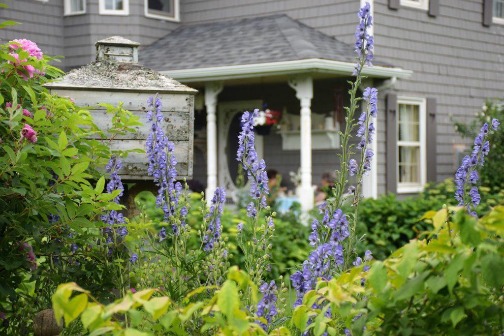 Victorian Garden Party A Success - flowers