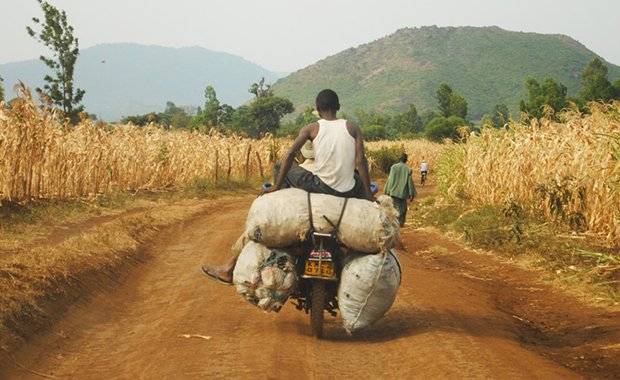 Motorcycle portfolio